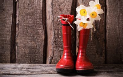 Reflecting on Nature's Beauty: 20 Activities for Kids and Parents to Appreciate and Enjoy Nature
